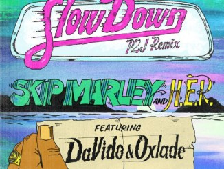 Skip Marley – Slow Down (Remix) ft. Davido, Oxlade & H.E.R
