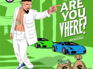 Skiibii — Are You Vhere?