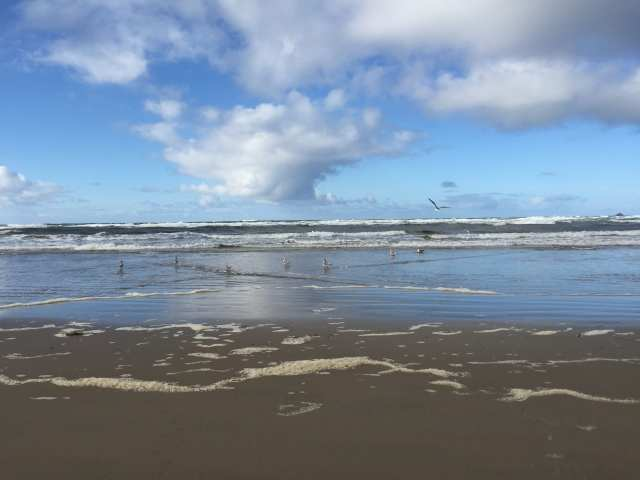 b-day at cannon beach - (1)