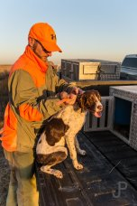 Vance Fielder loads a dog in the back of his truck after a hunt.