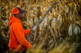 Eric Orsburn walks along the side of a field of corn as we hunt CRP land next to a corn field.