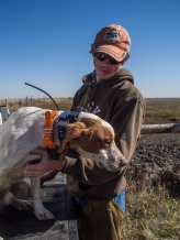 Cory Stokes prepares one of his dogs to hunt.