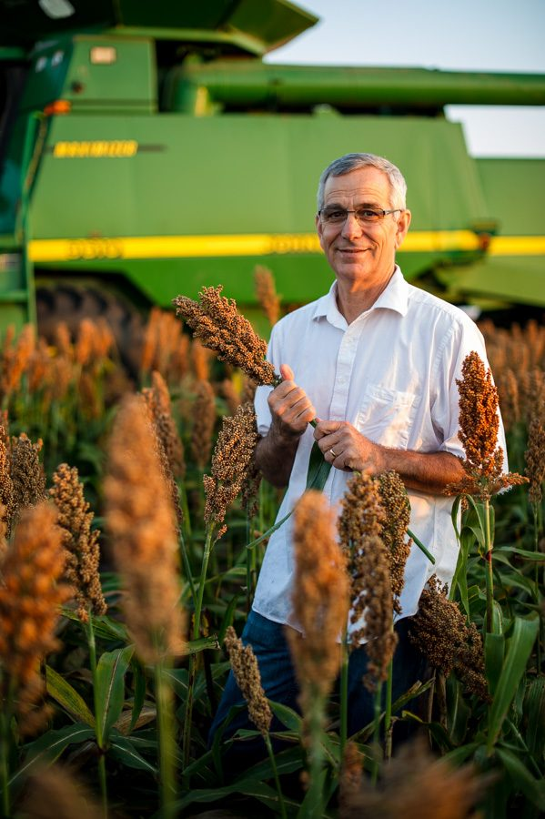 Oklahoma Secretary of Agriculture Jim Reese holds a stalk of milo on his farm north of Nardin, OK during harvest.
