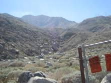 Looking up Lamb's Creek into Oasis de los Osos