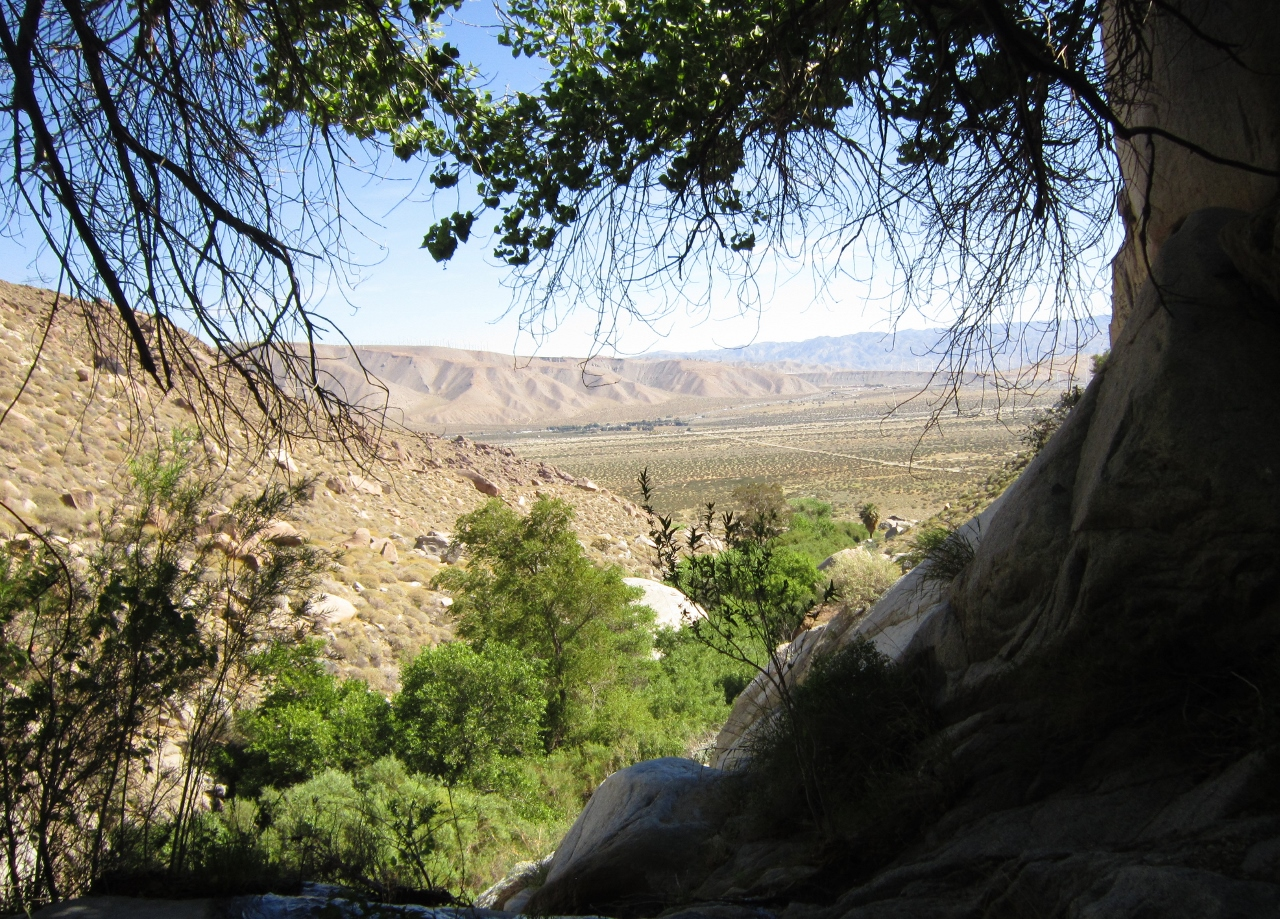 Looking down Lamb's Creek from the waterfall area