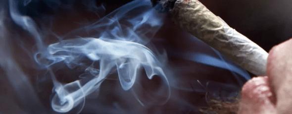 Cannabis related Illness CBC News | James Alexander Michie