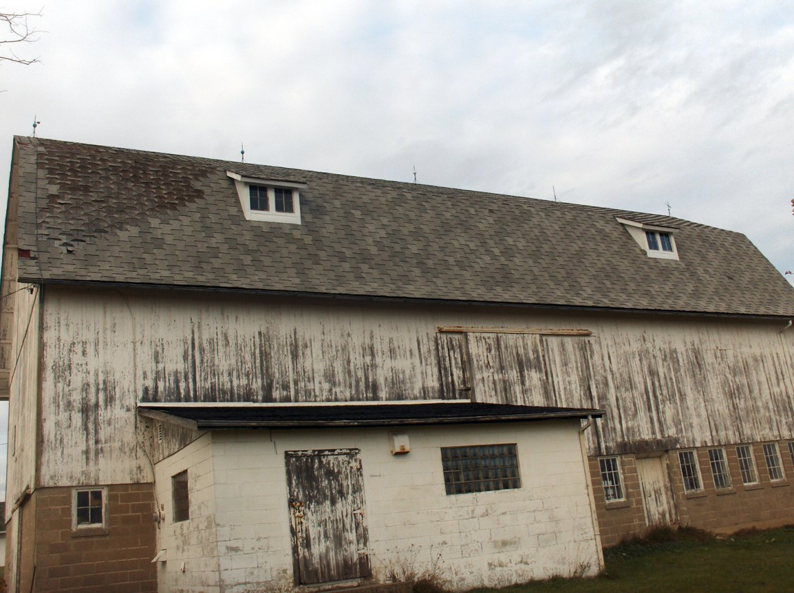 Roof Repair and Replacement | Milwaukee Experts | James Allen Builders