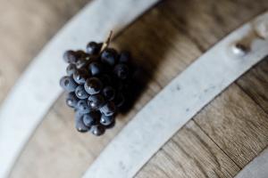 Dark red grapes on a barrel