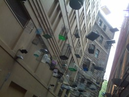 Hanging Birdcages in Laneways