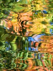 Autumn Abstract 10