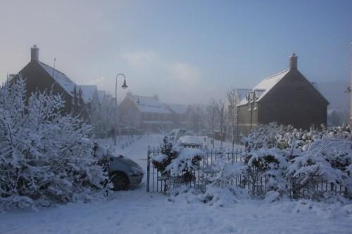 Snow December 2010