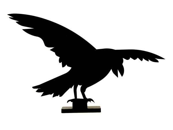 Product Image: Steel Crow 1 (on stand)