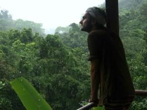 The Jungle, India