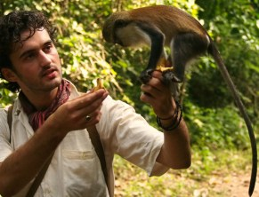 Tafi Atome, Sacred Mona, Wild monkey