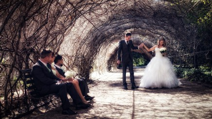 Z&K-WEDDING-BOTANIC-GARDENS-ADELAIDE-11