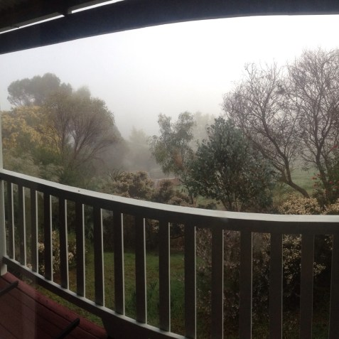Balingup mist