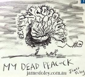my dead peacock