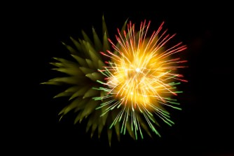 firework, abstract, photography, dandelions, long exposure, focus, new year, celebration,