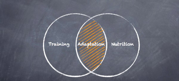Training-Adapt-Nurition Venn
