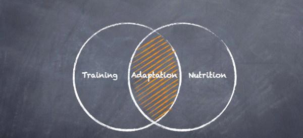 Training-Adapt-Nurition Venn