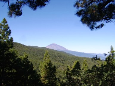 Teide in the distance.