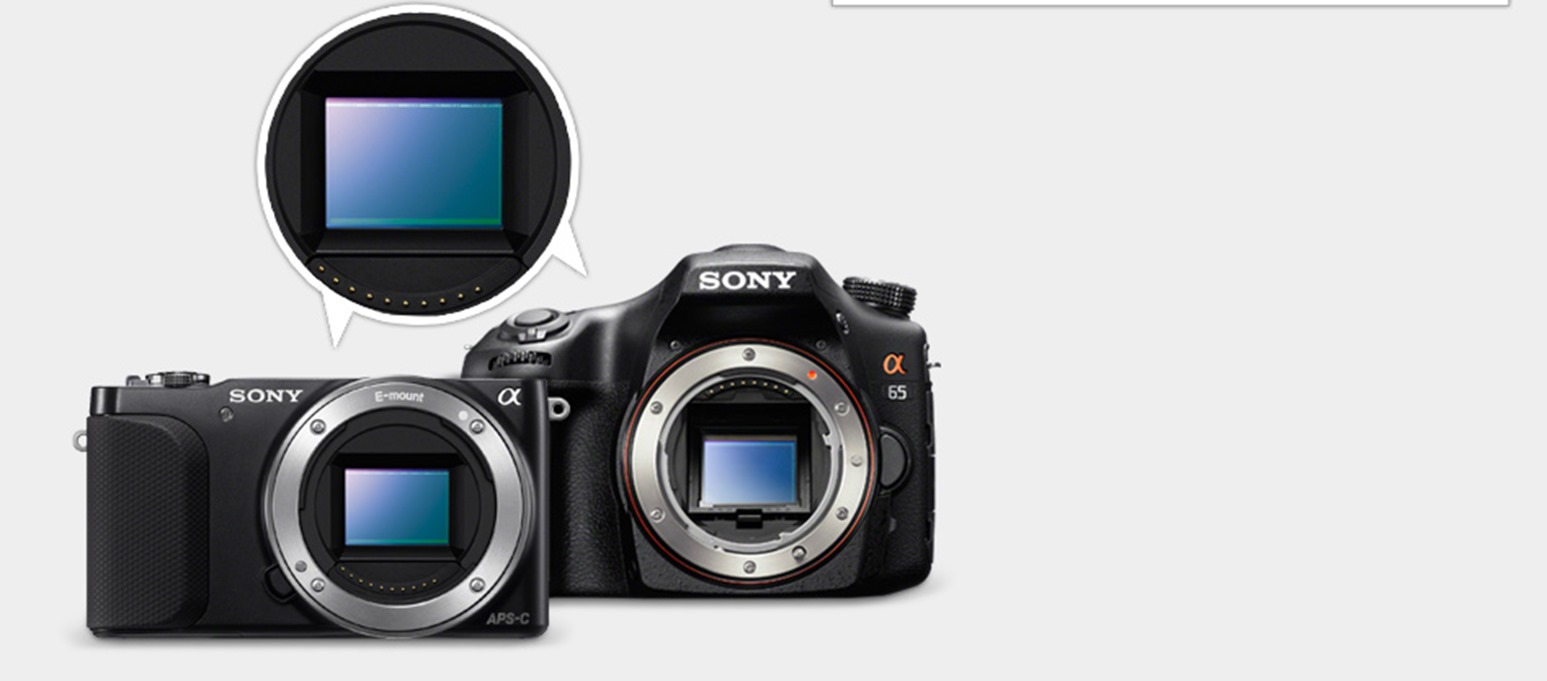 Sony NEX-3N/B Sensor