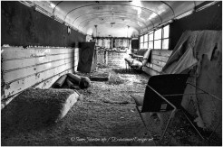 Abandoned Prayer Bus