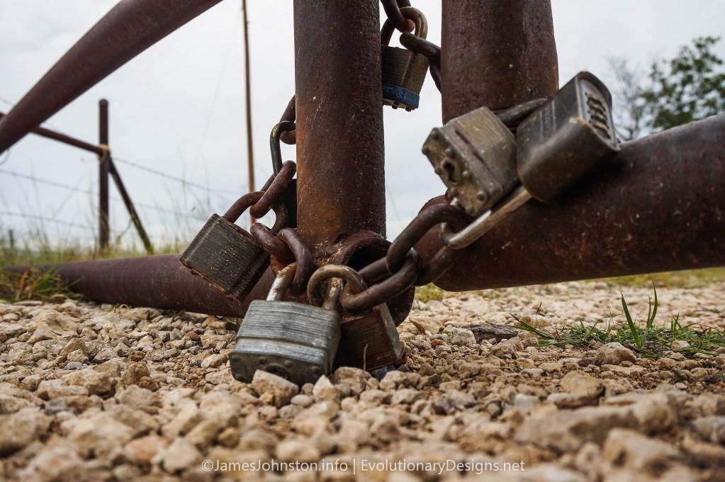 Master Lock Padlocks Hanging from a Rusty Gate