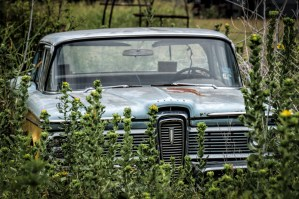 Random Image of the Week #51: Hidden & Abandoned Car in the Weeds