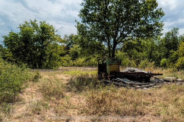 Abandoned Chevrolet COE Truck in the Woods