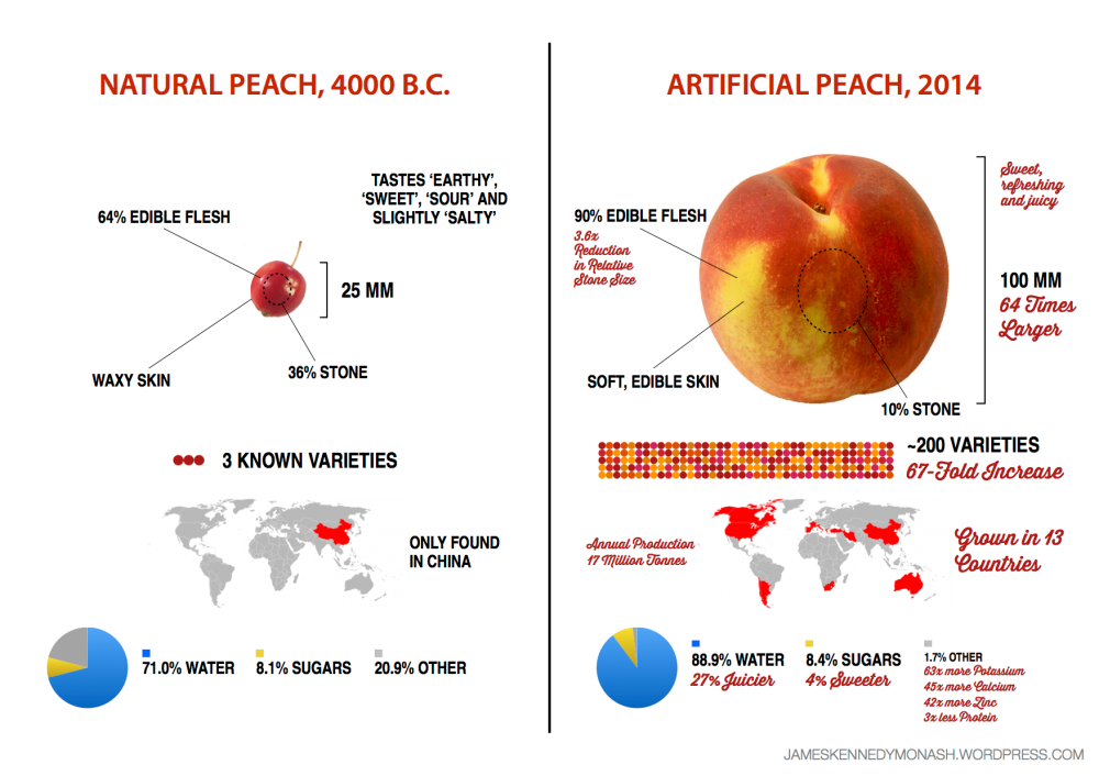 medium resolution of artificial vs natural peach jameskennedymonash