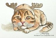 Rudolf Kitty