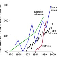 Biological Mechanisms of Vaccine Injury 2: Autoimmunity