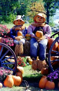 Mr & Mrs Scarecrow on the Pumpkin Harvest Wagon