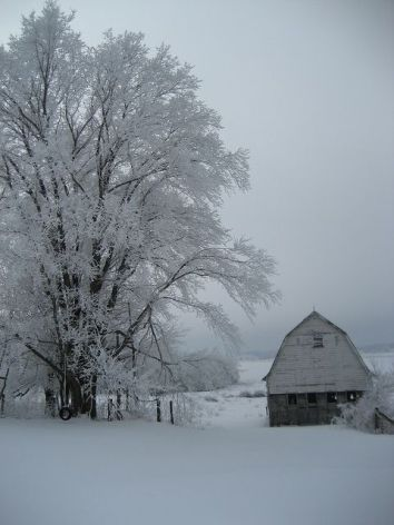 Snowy Christmas Barn Scene- by gracefullady on Flickr
