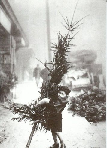 Vintage Photo- Little Child with Christmas Tree