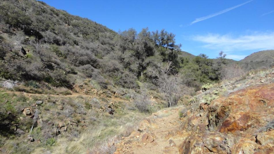 Noble Canyon, San Diego, CA (2)