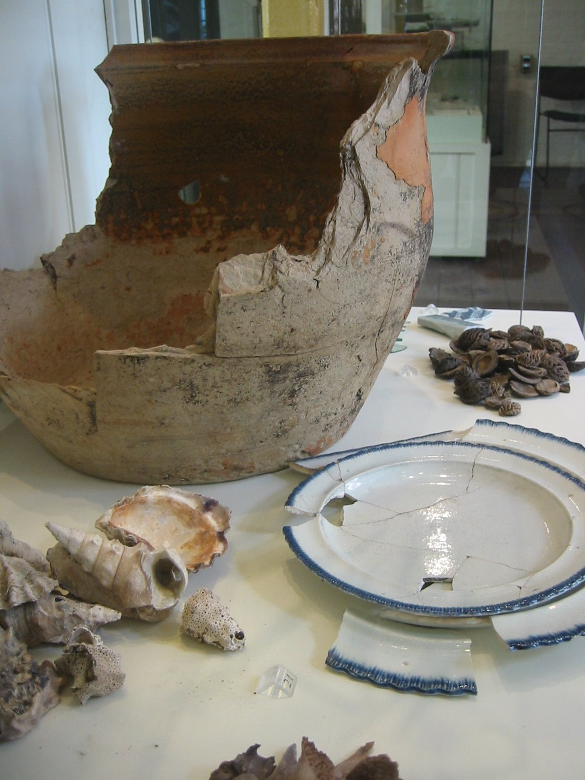 Sydney Rocks archaeological dig remains
