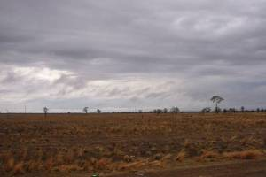Coonamble is a long long way from Sydney. It's on that broad flat black soil country - with occasional touches of red soil - that only comes from really getting away from the coast. But it was well worth the drive.