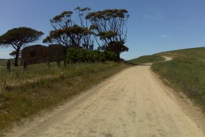 Dirt road on the way to Myponga Beach