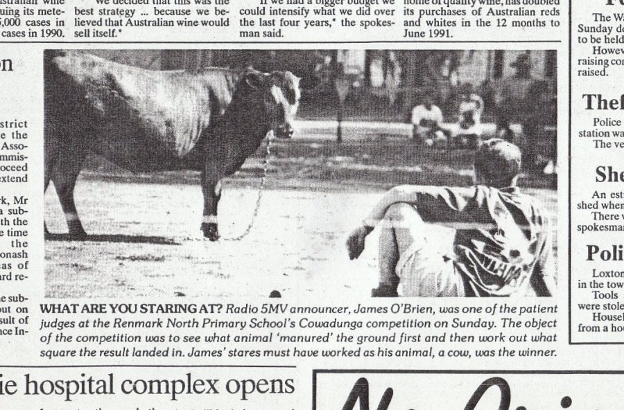 Judging a cow-pooing competition, as featured in the Murray Pioneer newspaper