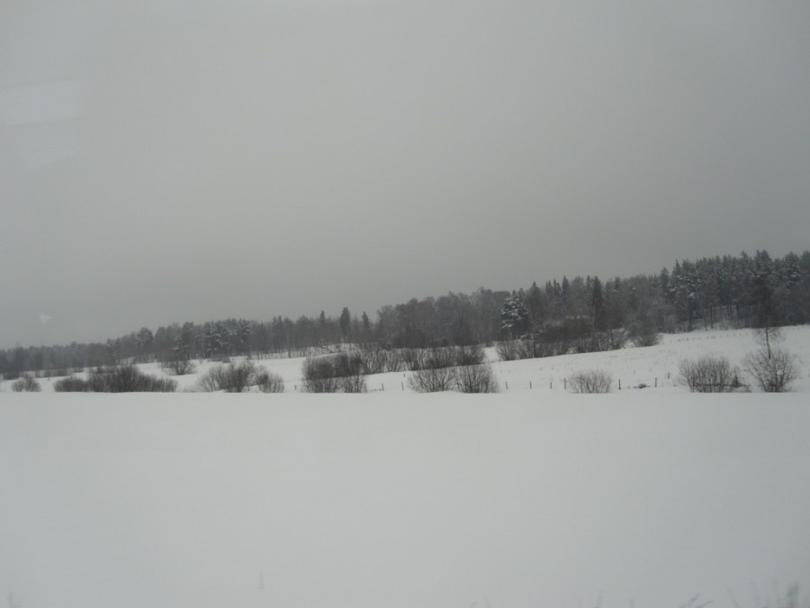 View from the train between Gavle and Stockholm