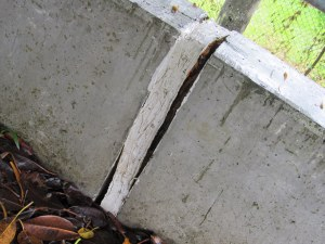 A small crack in the levee bank at Lismore