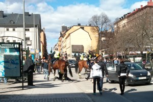Protest at Medborgarplatsen
