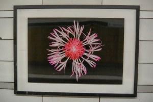 Helene Schmitz artwork in the Mariatorget T-bana in Stockholm
