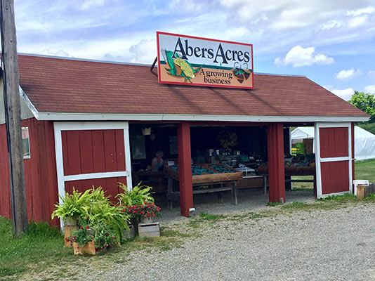 Abers Acres, a certified organic fruit and vegetable farm.