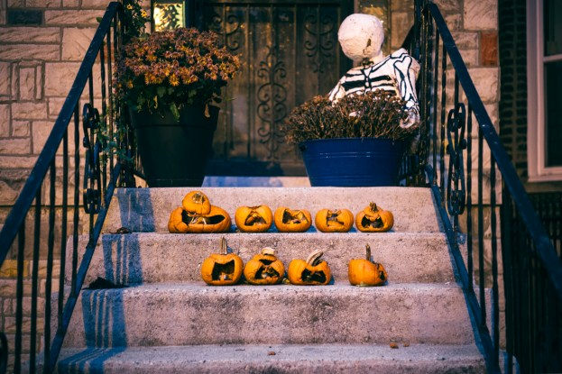 Halloween Aftermath. Chicago, IL 2015