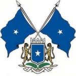 Logo Somali flag