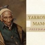 yarrow-maxmuud
