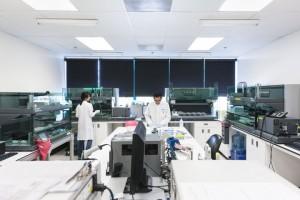 estimating alzheimers disease risk genetic testing